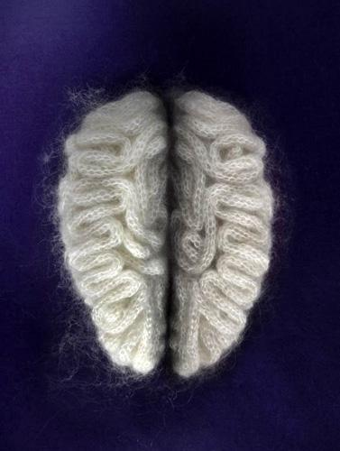 Knitted Brain