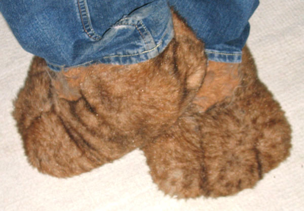 Paddington Slippers